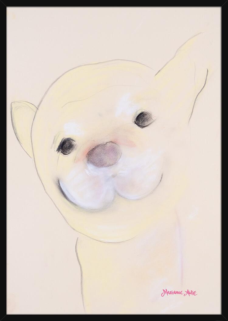En Chihuahua håndtegnet med rolige pastellfarger, av kunstner Marianne Aulie. Poster i en svart ramme.