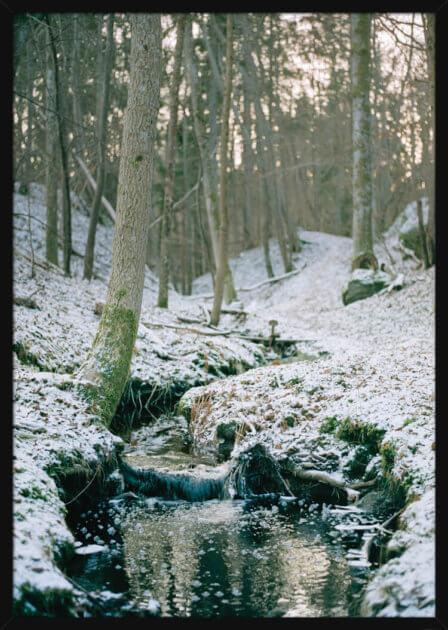 Vinter skog med en bekk som renner gjennom, av den norske fotografen Haakon Sand. Poster i en hvit ramme.