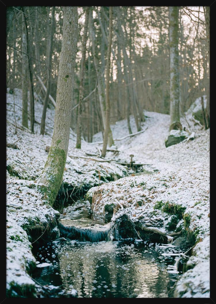 Vinter skog med en bekk som renner gjennom, av den norske fotografen Haakon Sand. Poster i en svart ramme.